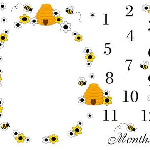 Bumble Bee Baby Girl Milestone Month Blanket