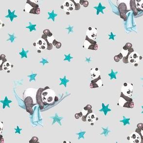 Baby Panda Coordinate