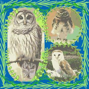 Pensive Owls