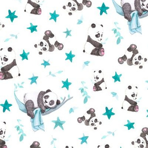 Baby Panda Bears on White