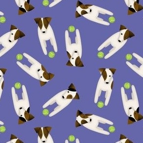 Parson / Jack Russell Terriers with cute head tilt / Large / purple