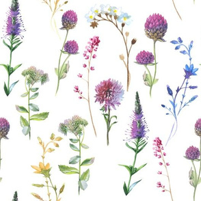 """10""""  Hand drawn Watercolor Flower Herbs Meadow on white"""