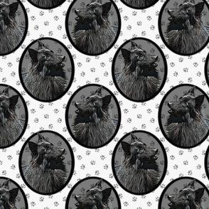 Belgian Groenendael Sheepdog framed portraits