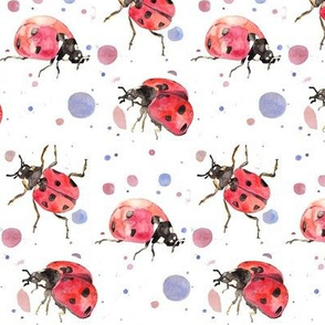 Lovely ladybirds