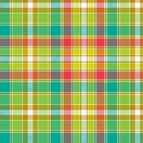 "Four Quarters tartan, 6"" botanical colors"