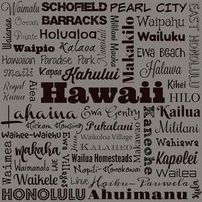 Hawaii cities, gray