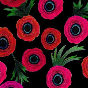 Anemone flowers in pink and red on black