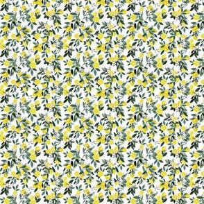 DearClementine_lemons-white micro
