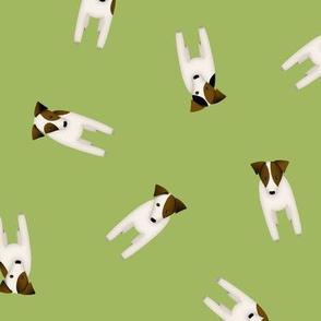 JRT PRT tiny terriers green