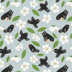 Blackbirds and Apple Blossom Blue
