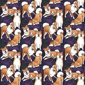 Tiny Breezeley poses (purple)
