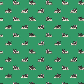 Boston Terrier Pattern Green Background