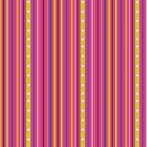 Papillon Stripe