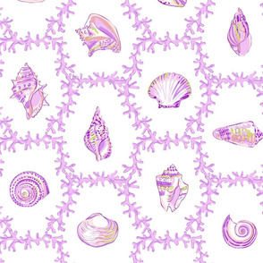 Shell Coral Pink