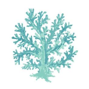 Coral Seafoam