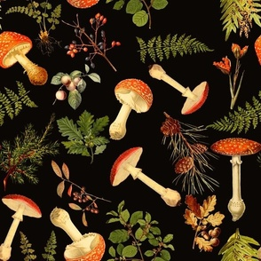 "12"" Harvest in the forest - on black-Antique mushroom fabric,mushrooms fabric"