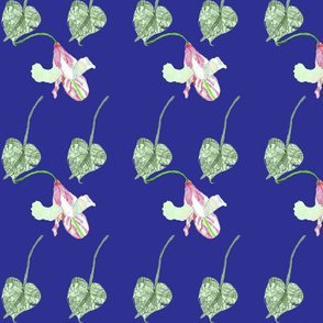 leaves and lillys blue
