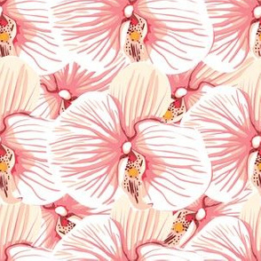 Pink And Lavender Orchid Pattern