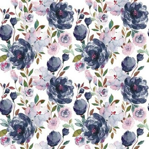 IBD midnight peonies A