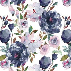 IBD midnight peonies B