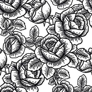 Vintage roses - black and white