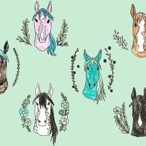 Kays Horse Portraits