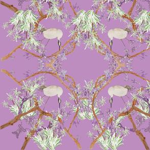 Bell birds pink