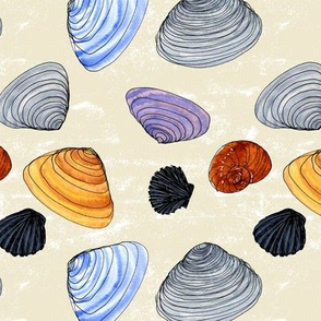 Watercolor Shells
