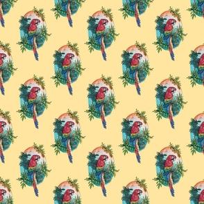 Macaw on Creme by ArtfulFreddy