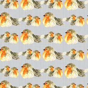 18-10D Fall Baby Bird Robin Gray Grey Texture _ Miss Chiff Designs