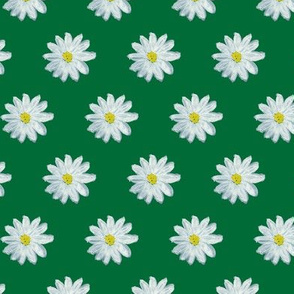 Flower power daisy