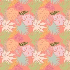 Melon Palms