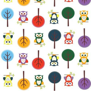 Colorful Owl Forest