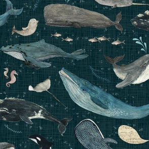 Whale's song dark blue {large}