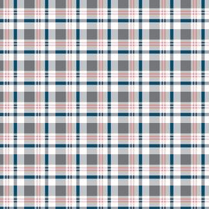 Small Scale Gray Navy Pink Plaid