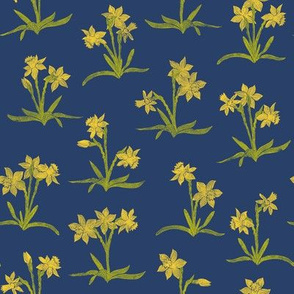 tiny bright yellow daffodils on navy