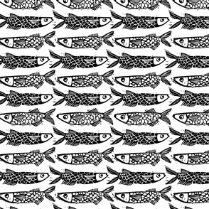 Sardine Stripe