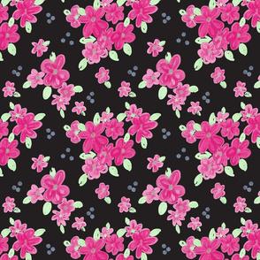 pinks-on black