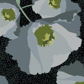 Poppies Grey-01
