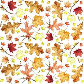 Leaf Extravaganza On White