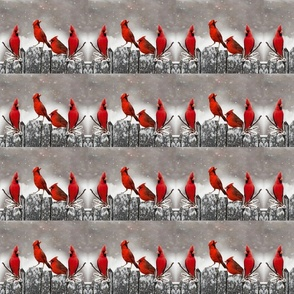 Red Cardinals on Snowy Fence
