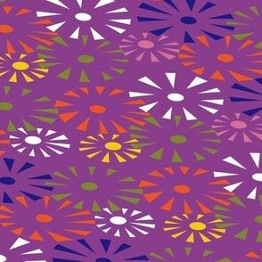 Go go Fireworks - multi on purple