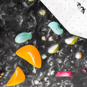 Free climbing bouldering gym holds wall black colorful FAT QUARTER