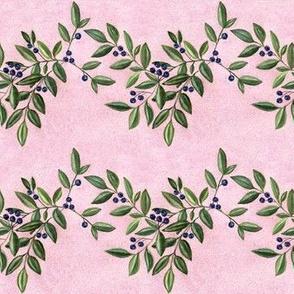 Blueberries on pink granite