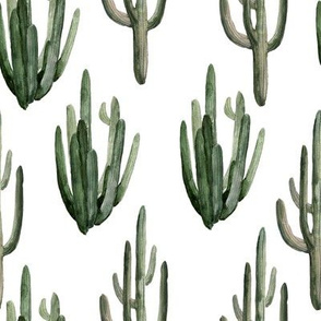 """8"""" Western Watercolor Cactus // White"""