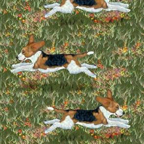 Fly Like a Beagle