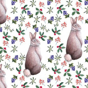 Watercolor rabbit & winter berries , Christmas , Thanksgiving
