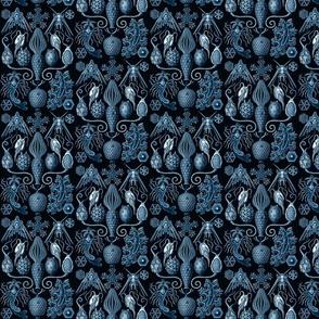Ernst Haeckel Amphoridea Sea Life Blue