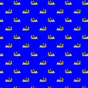 Boston Terrier Pattern Blue