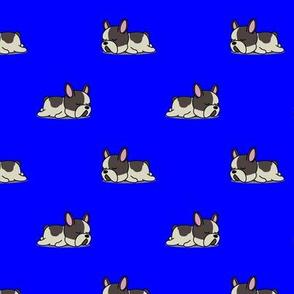 Boston Terrier Pattern Blue